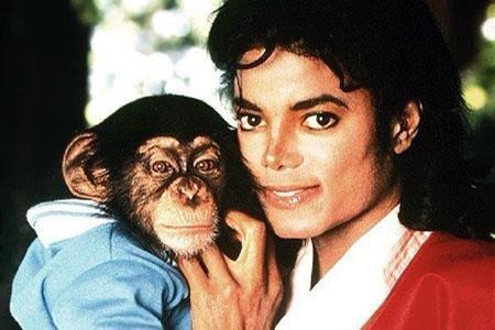 Тайка Вайтити и Netflix отказались снимать мультфильм про шимпанзе Майкла Джексона