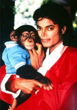 Таика Вайтити расскажет мультбиопик о шимпанзе Майкла Джексона