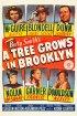 Постер «Дерево растет в Бруклине»