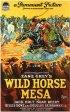 Постер «Wild Horse Mesa»