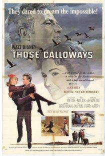 «Ох, уж эти Кэллоуэйзы»