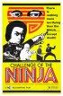 Постер «Шаолинь вызывает ниндзя»