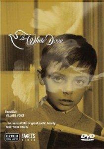 «The White Dove»