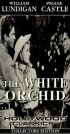 Постер «The White Orchid»