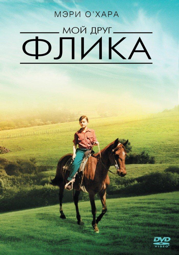 скачать фильм про лошадей