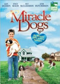 «Miracle Dogs»