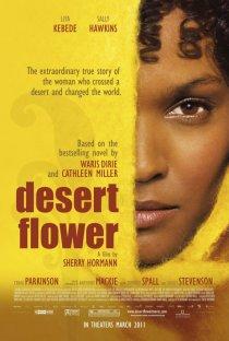 «Цветок пустыни»
