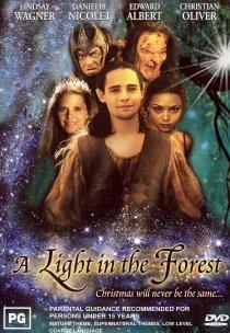 «Свет в лесу»