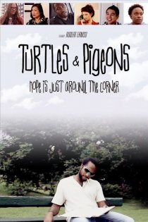 «Turtles & Pigeons»