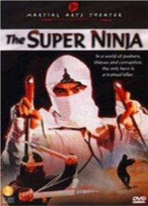 «Отряд ниндзя – невидимые убийцы»